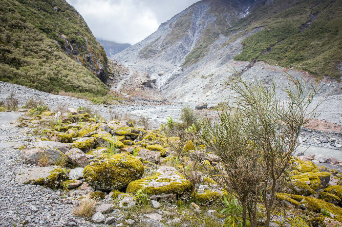 A 2016 view of where the Fox Glacier used to be.