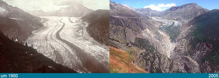 The Great Aletsch Glacier is