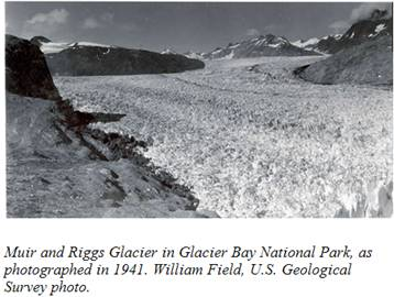A 1941 view of the Muir Glacier in Glacier Bay National Park.