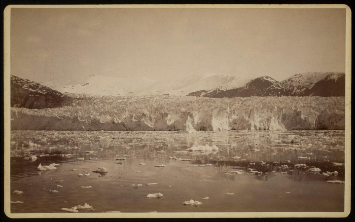 The terminus of the Taku Glacier as seen in 1891